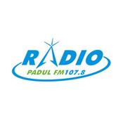 Radio Radio Padul 107.8 FM