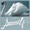 Accent 4