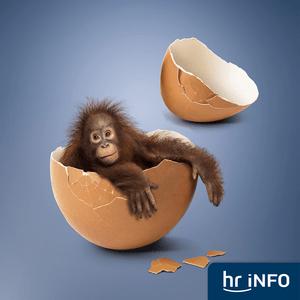 hr-iNFO - Funkkollek: Biologie und Ethik