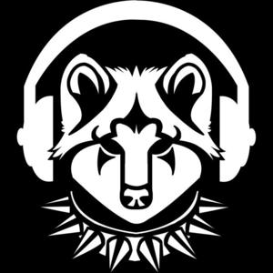 Radio RadioSinnflut